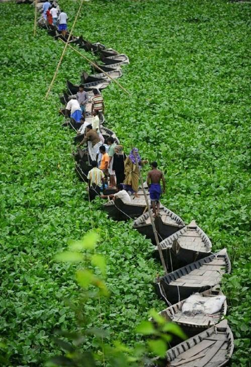 best_11a90263a8-7-A-floating-boat-bridge-on-the-Buriganga-river-in-Dhaka-Bangladesh 1