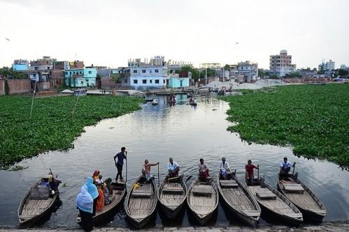best_dc82124e20-2-boaters-bangladesh-hyacinths-1