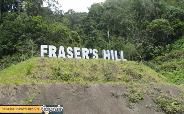 Ngọn đồi Frasers