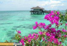 Những địa điểm du lịch nổi tiếng ở bờ đông Malaysia